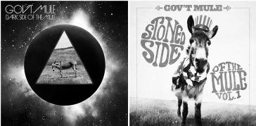 Dark Side of the Mule album cover