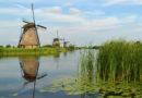 Tourism Troubles in Kinderdijk