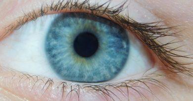 The Origin of Blue Eyes