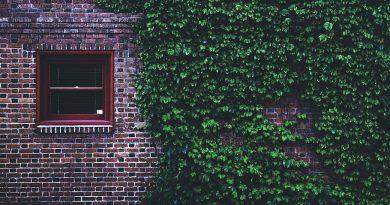 A House Ushered